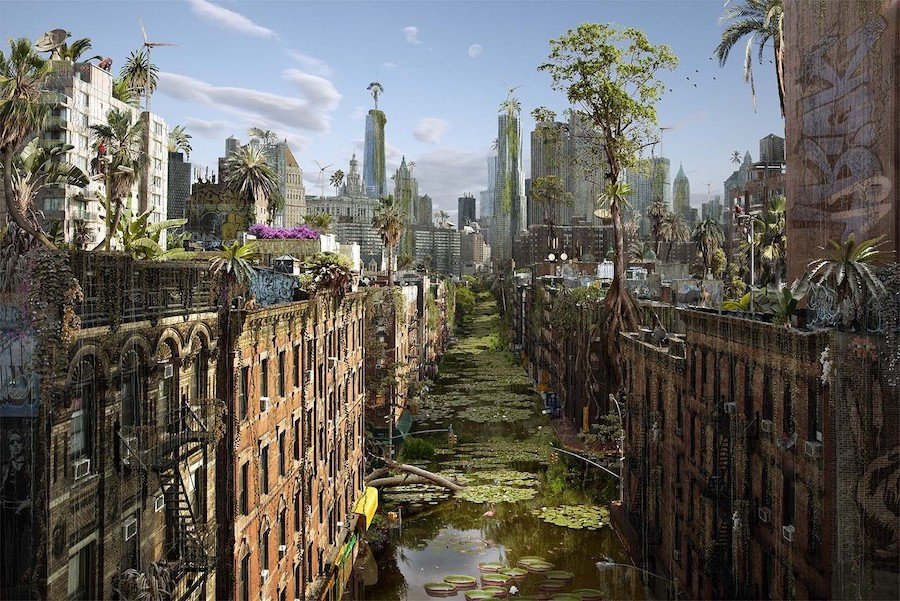 What Would Cities Look Like If Humans Disappeared #4   Brain Berries