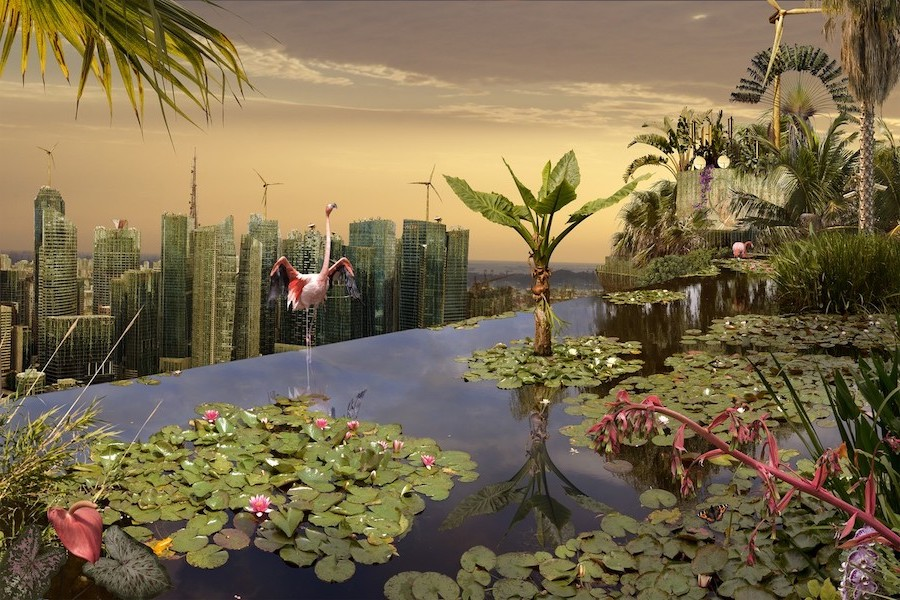 What Would Cities Look Like If Humans Disappeared #8   Brain Berries