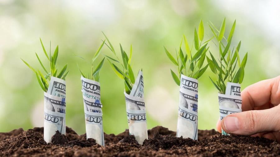 Научитесь ставить долгосрочные цели   9 правил, которые принесут вам деньги   Zestradar