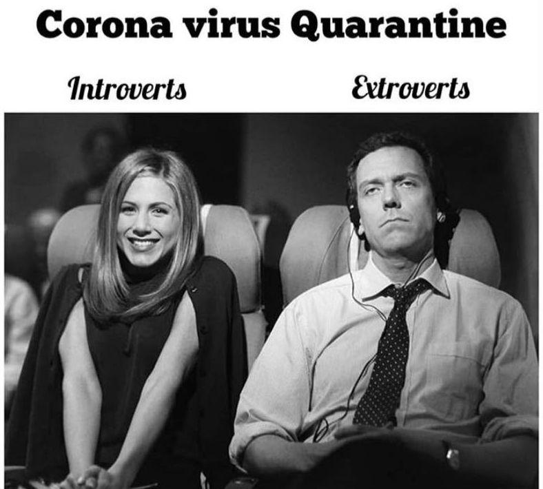 15 Relatable FRIENDS on Quarantine Memes | Brain Berries