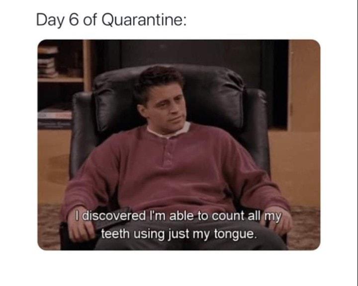 15 Relatable FRIENDS on Quarantine Memes #4 | Brain Berries