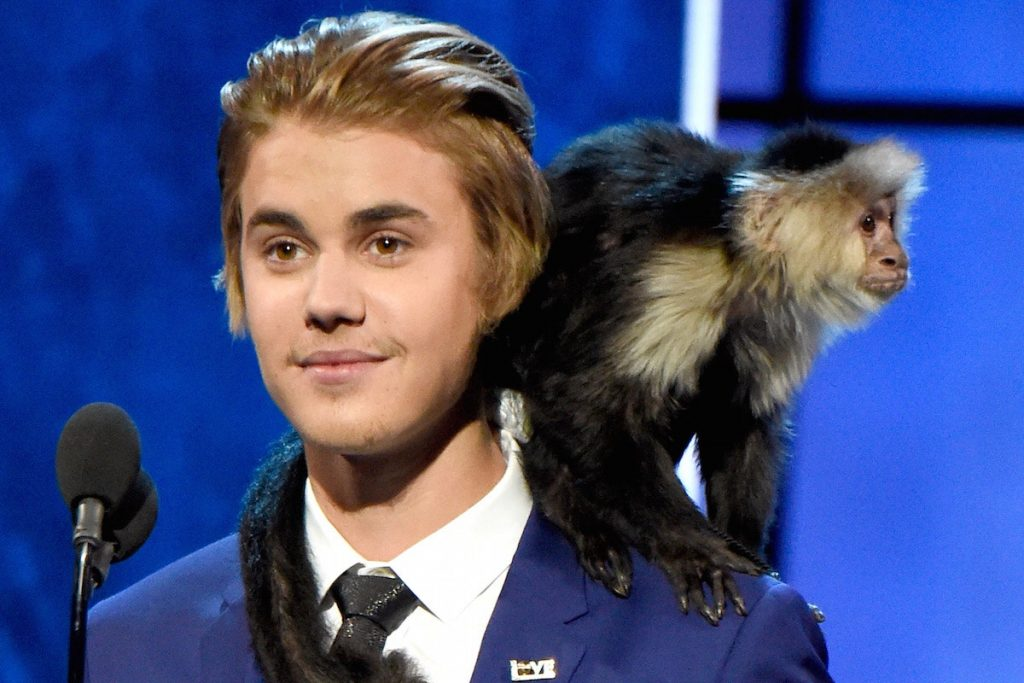 Justin Bieber – Monkey | Kristen Stewart – Wolf | 10 Celebrities With Truly Weird Pets | Zestradar