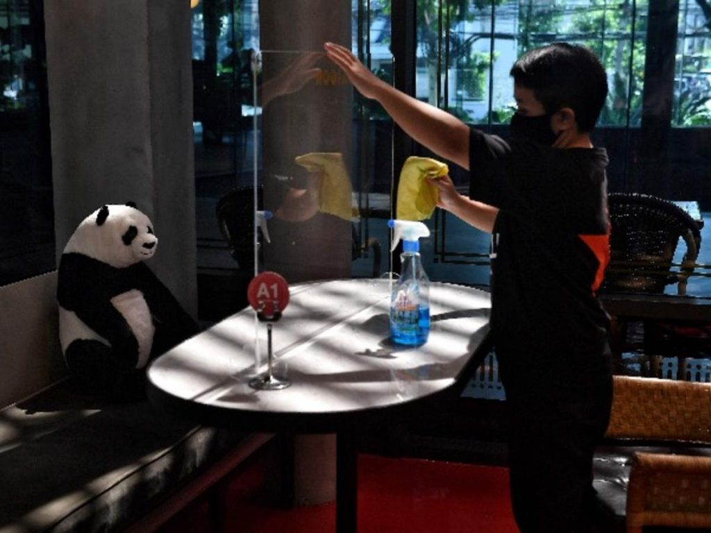 #10 | Restaurant in Thailand Brings Pandas to the Table to Promote Social Distancing | Zestradar