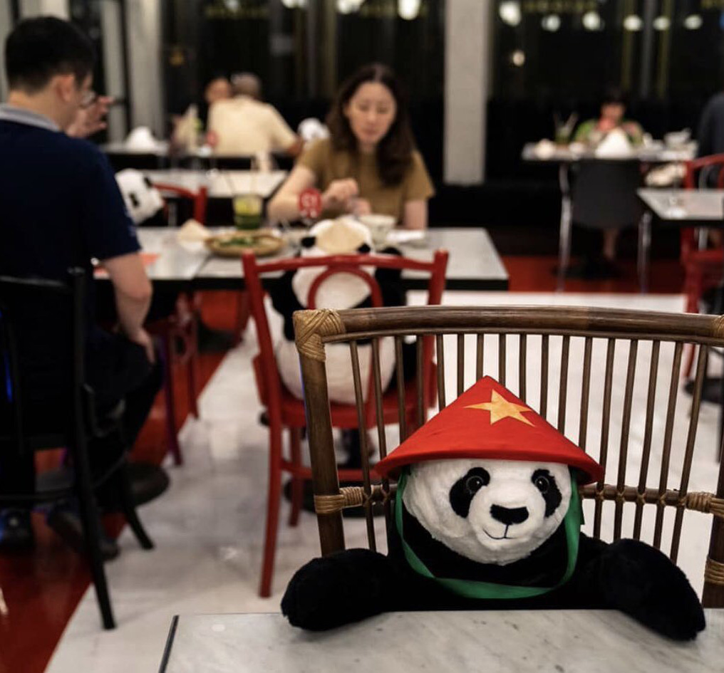 #3 | Restaurant in Thailand Brings Pandas to the Table to Promote Social Distancing | Zestradar