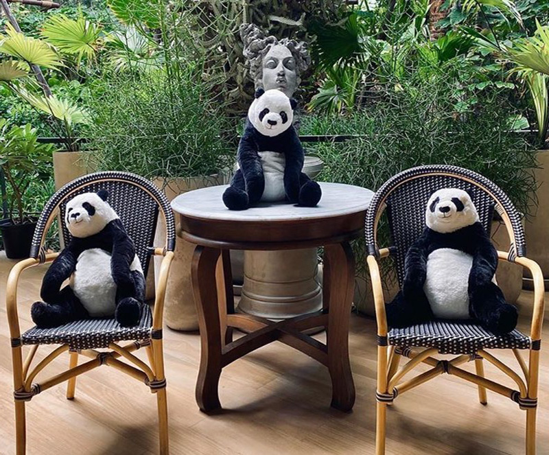 #7 | Restaurant in Thailand Brings Pandas to the Table to Promote Social Distancing | Zestradar