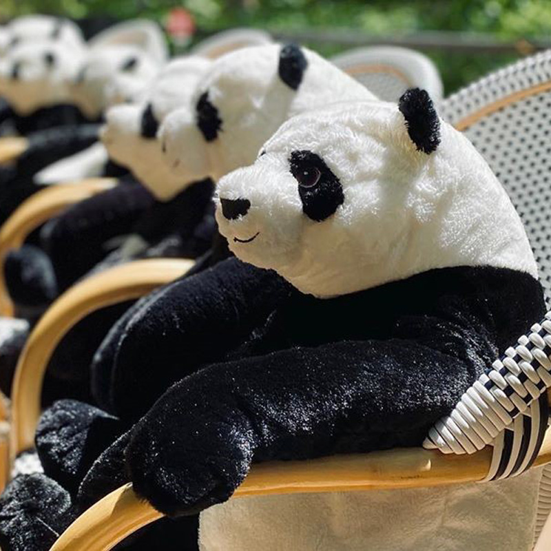 #8 | Restaurant in Thailand Brings Pandas to the Table to Promote Social Distancing | Zestradar