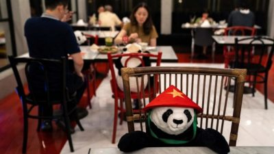 Restaurant in Thailand Brings Pandas to the Table to Promote Social Distancing | Zestradar