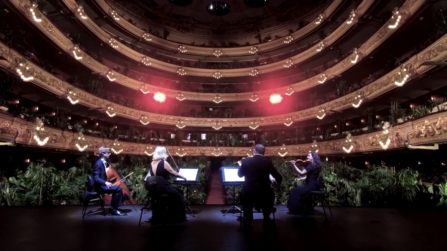 Barcelona Celebrated The End Of Lockdown With A Concert For Plants #3 | Brain Berries