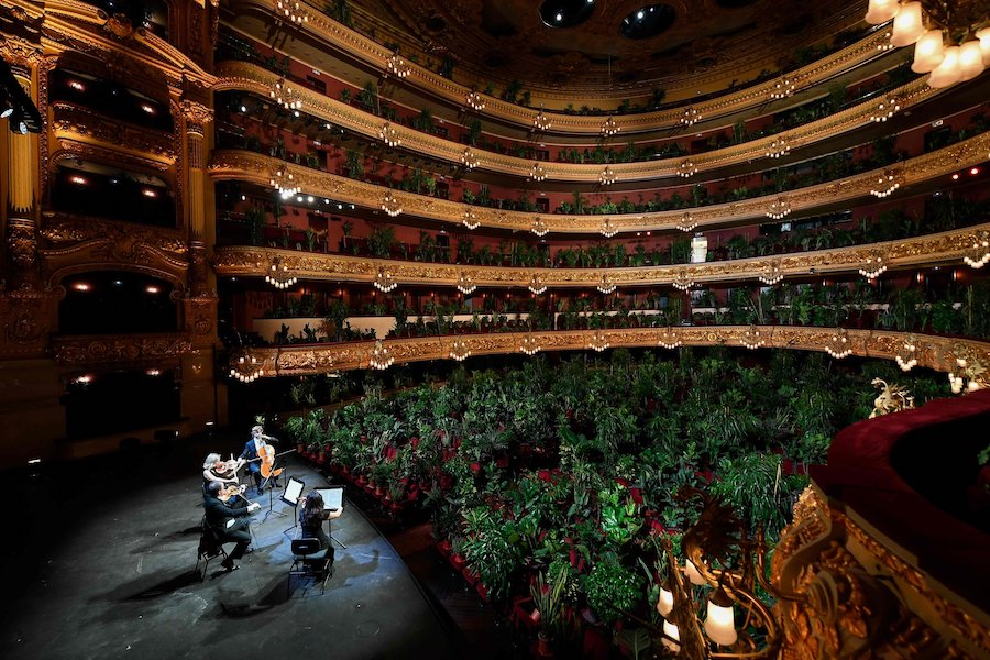 Barcelona Celebrated The End Of Lockdown With A Concert For Plants #6 | Brain Berries