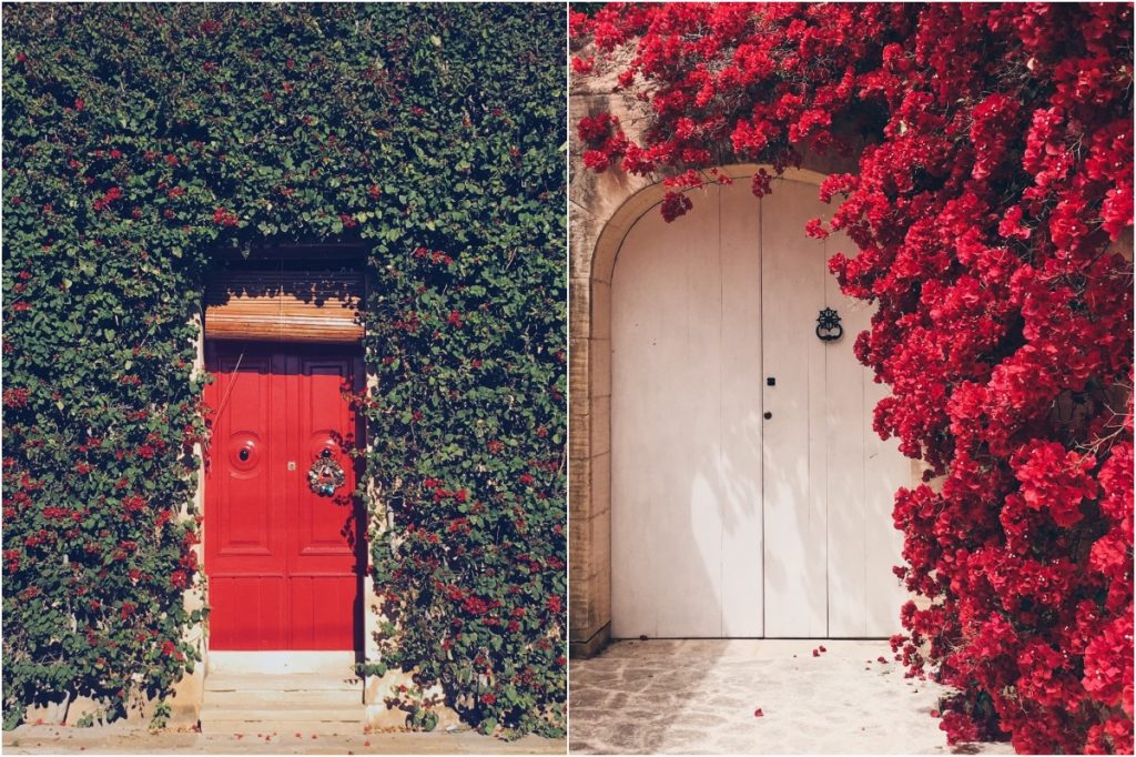 #6 | Beautiful Doors Of The World | Zestradar