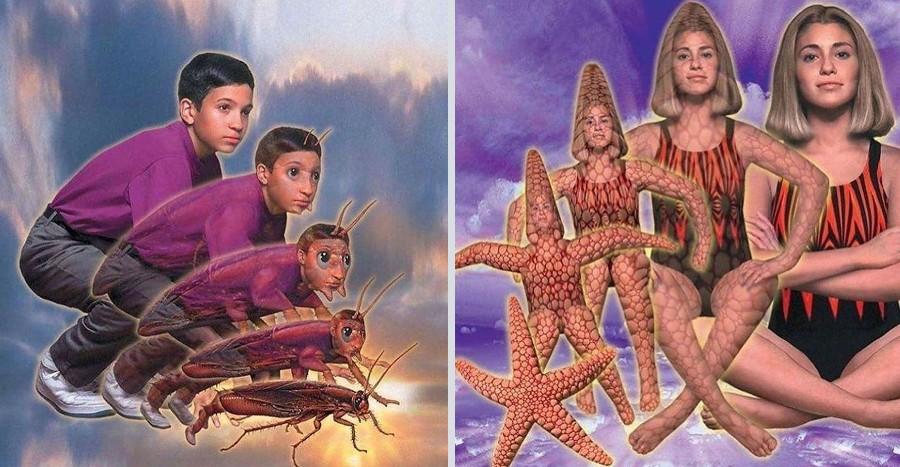 Do You Remember 90s Animorphs? | Zestradar