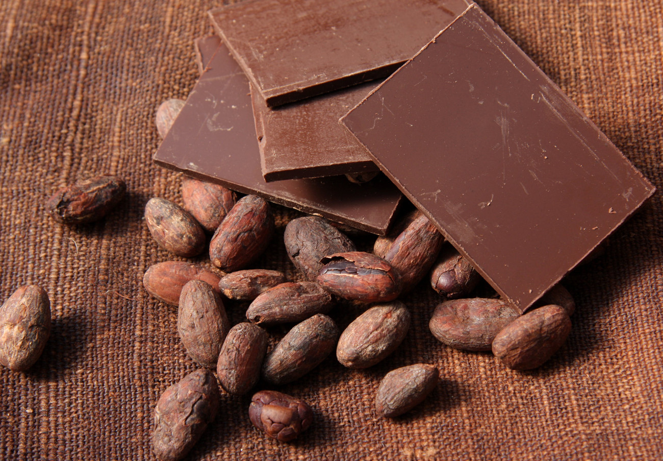 The Incredible History of Chocolate | Zestradar