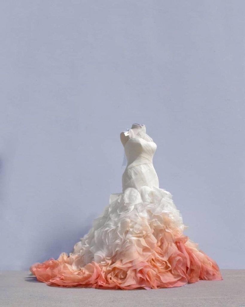 #8 | Artist Starts A Business Creating Unique Colorful Wedding Gowns | Zestradar