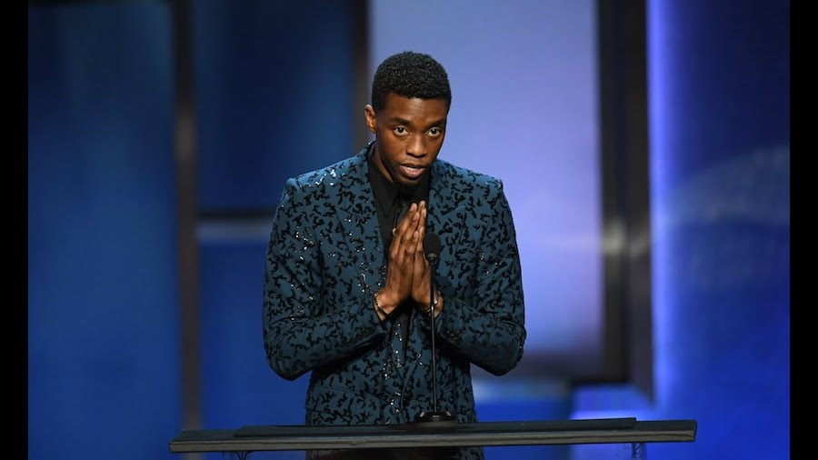 A Tribute To Black Panther Actor Chadwick Boseman | Brain Berries