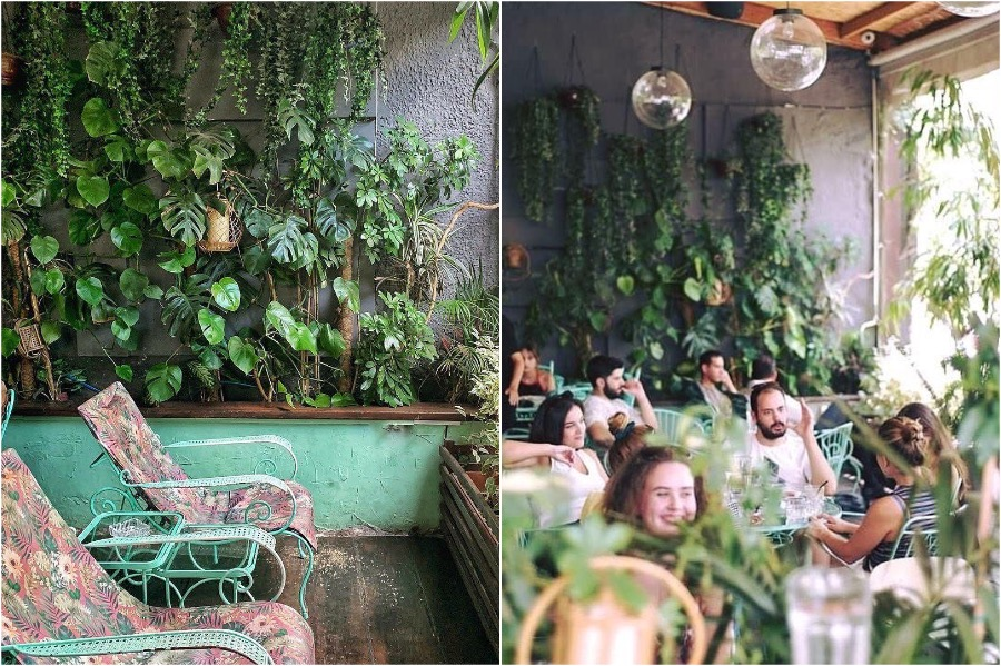 Blue Parrot, Athens | The 8 Most Beautiful Cafes In Greece | Zestradar