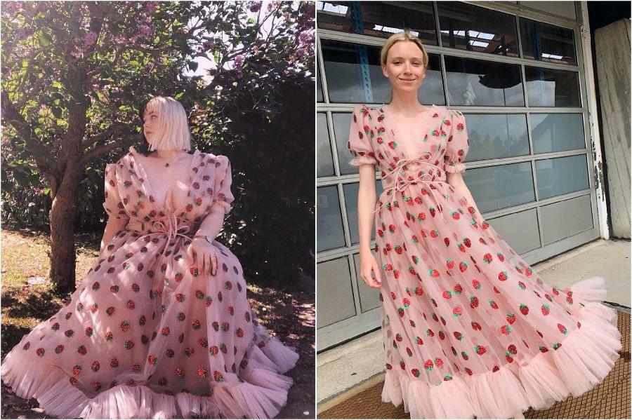 #3 | The Success of The Strawberry Dress | Zestradar