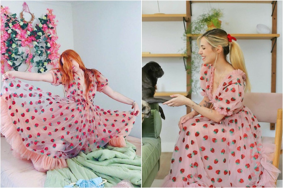 The Success of the Strawberry Dress | Zestradar