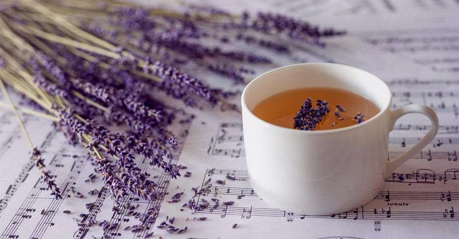 Лавандовый чай | Самые необычные чаи | Zestradar