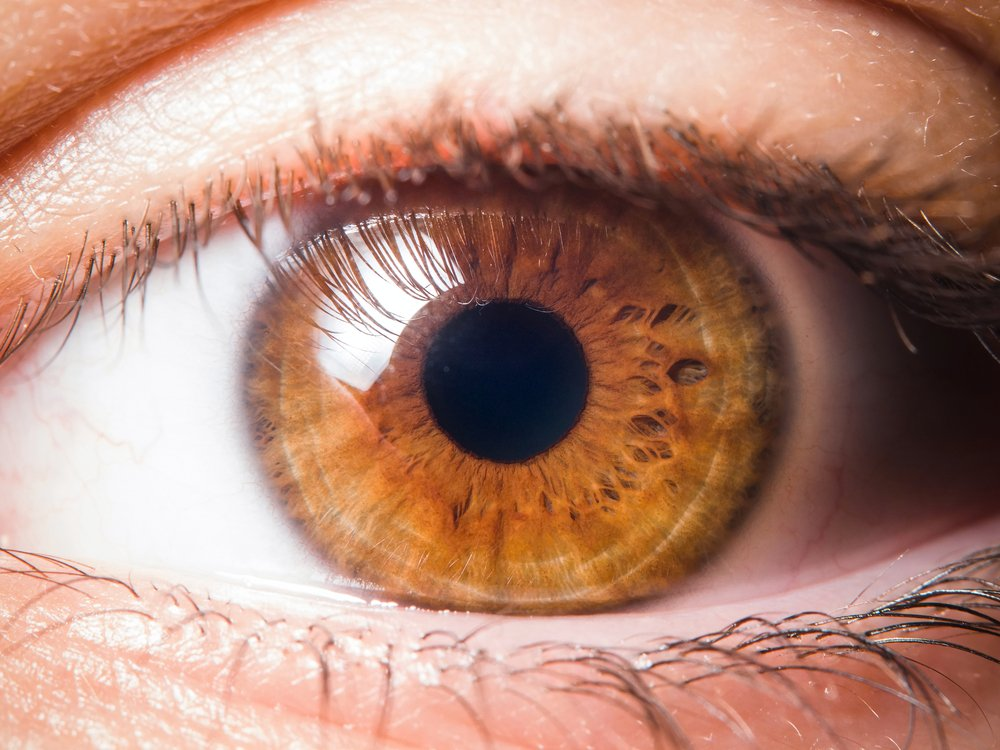 Things Your Eye Color Can Say About You | Brain Berries