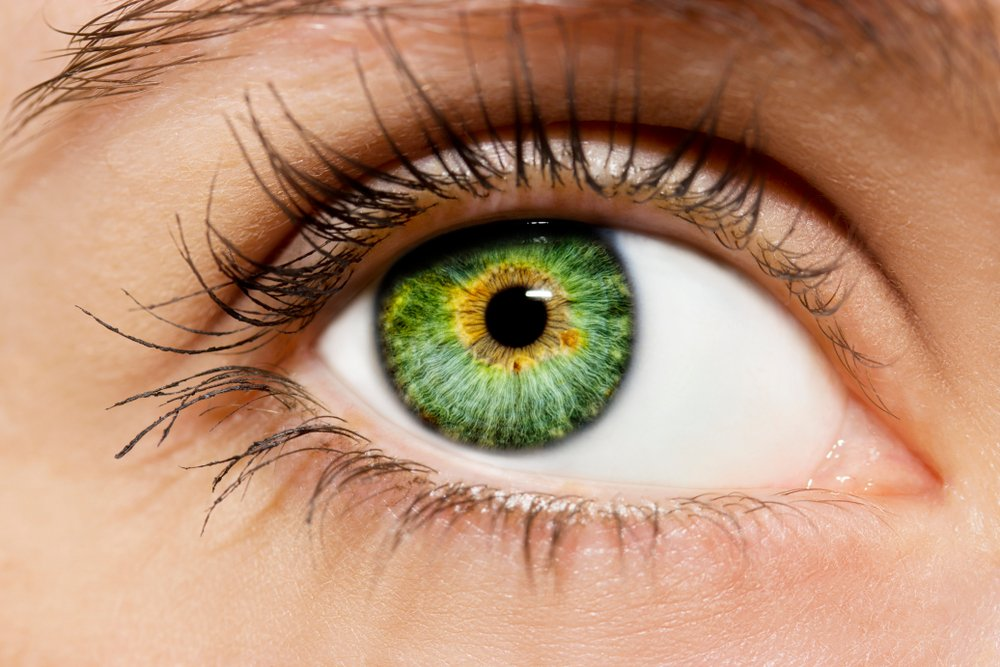 Things Your Eye Color Can Say About You #2 | Brain Berries