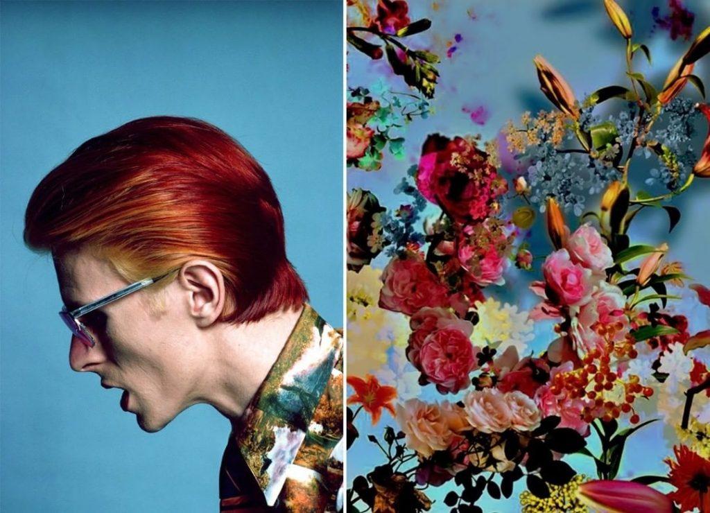 #3 | David Bowie As Flowers | Zestradar