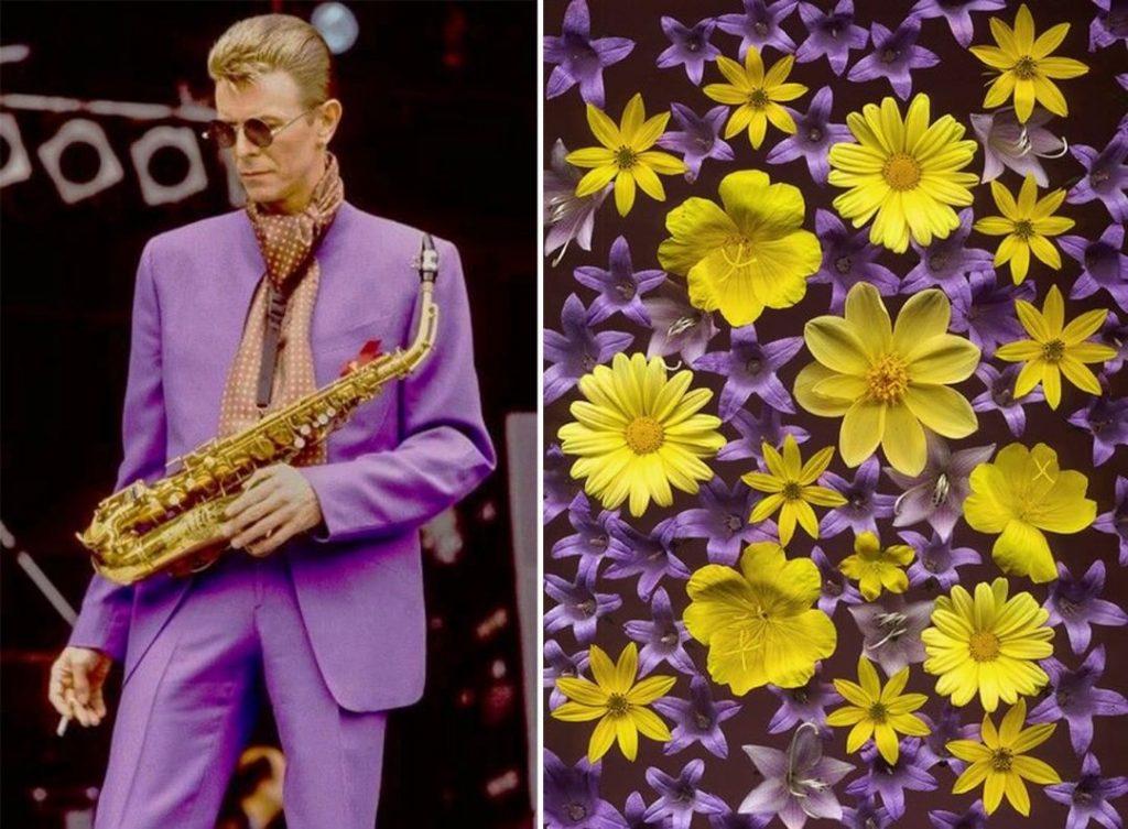 #9 | David Bowie As Flowers | Zestradar