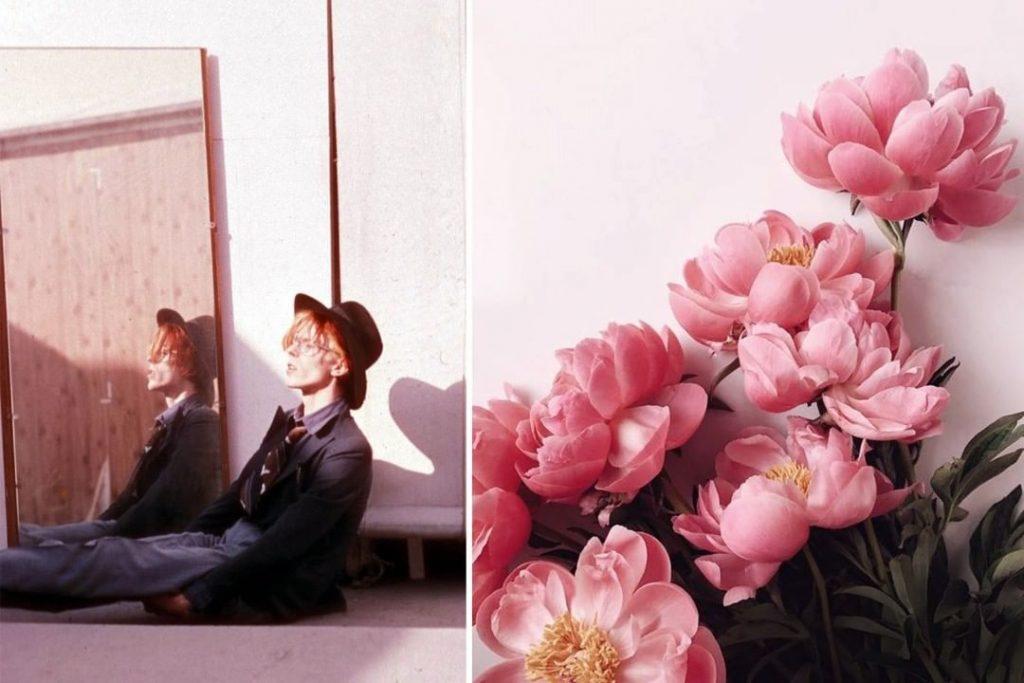 Пионы. | Дэвид Боуи и цветы: 15 волшебных портретов музыканта | Zestradar