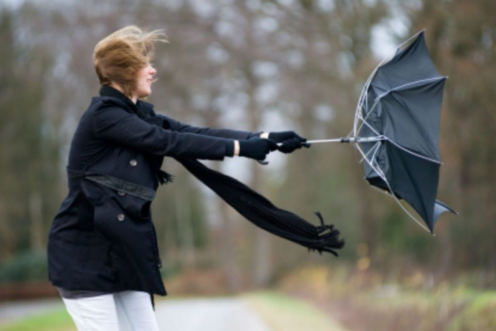 What Your Favorite Weather Type Says About You | Brain Berries