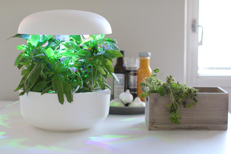 Умный горшок для растений | 8 умных гаджетов и девайсов, без которых совсем скоро мы не будем представлять свою жизнь | Zestradar