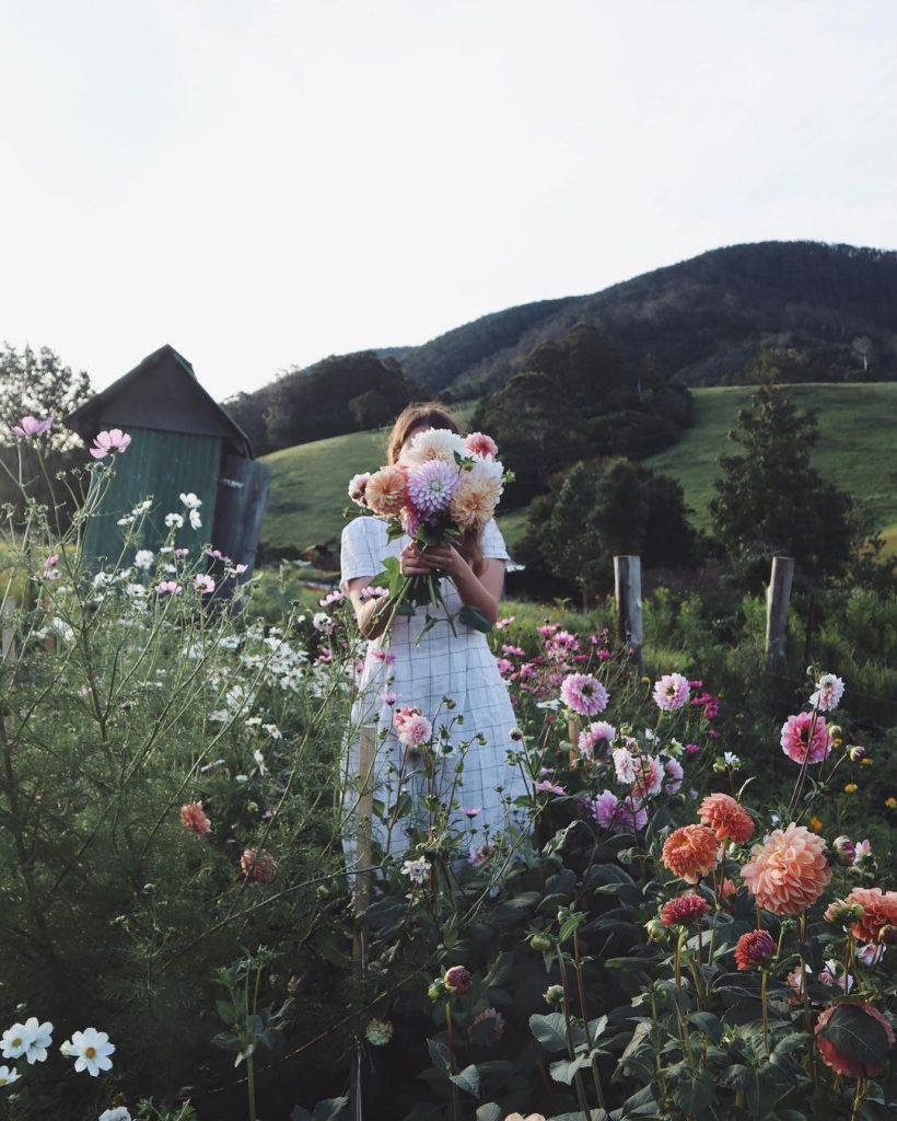 #4 | 8 Instagram-аккаунтов о счастливой жизни на природе | Zestradar