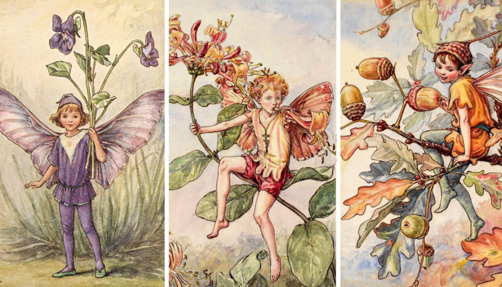 Leprechaun Hunting  | Things You Probably Didn't Know About Fairies | Zestradar