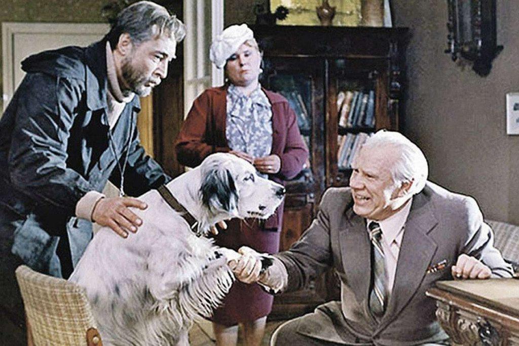 «Белый Бим Черное ухо», 1978   Отечественные фильмы, которые были номинированы или получили премию «Оскар»   Zestradar