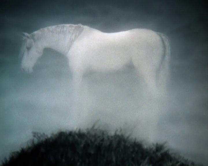 #5 | Тайный смысл культового советского мультфильма «Ежик в тумане» | Zestradar